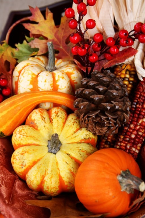 Orange and yellow gourds decorate a Thanksgiving table.