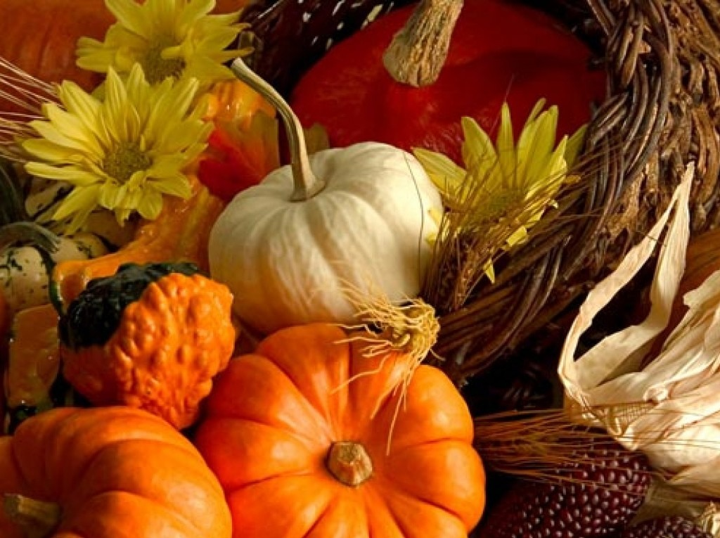 Image of yellow and orange gourds