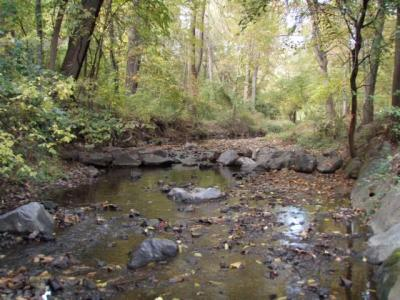 Weir introduced in Sligo Creek as part of restoration project