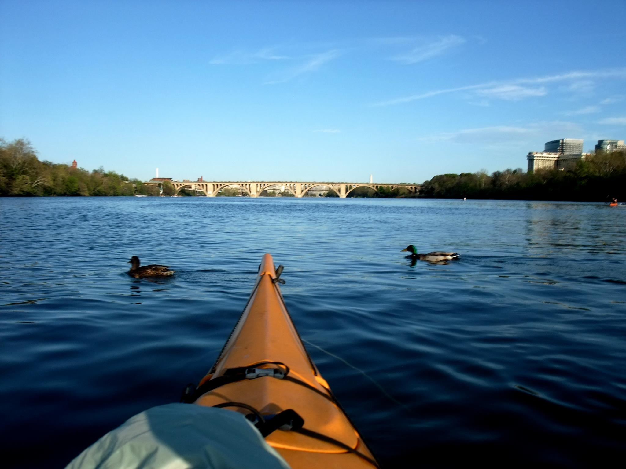 """The Potomac is the """"most endangered river"""" in the U.S….Really?"""