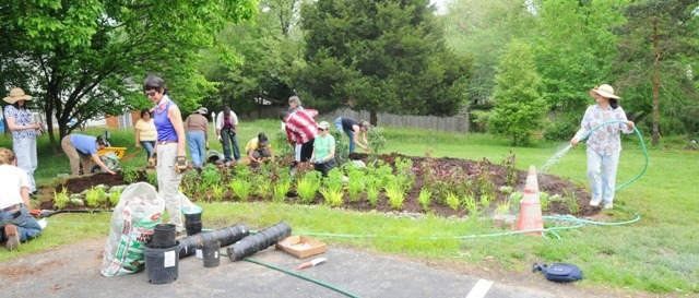Image of volunteers building a rain garden.