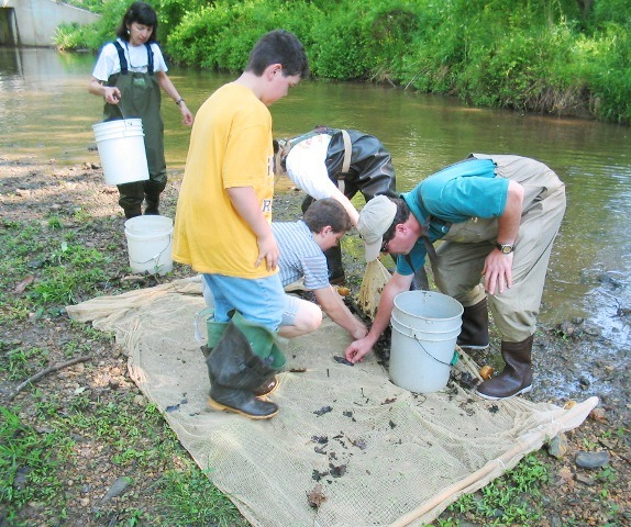 Image of people studying aquatic life by a stream.