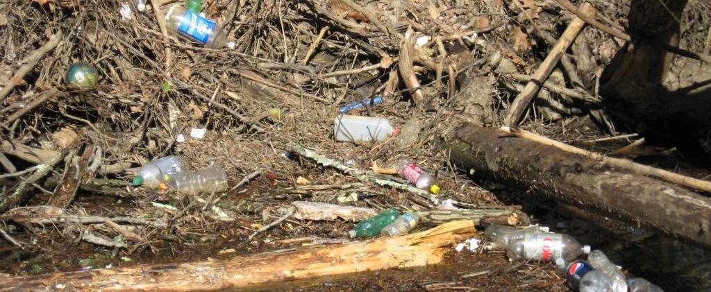Photo of litter along a stream.