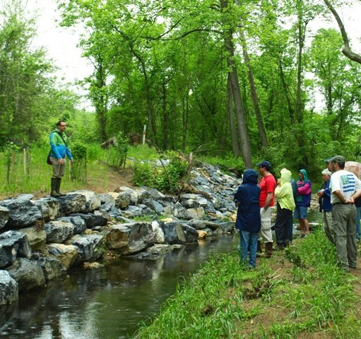 Image of DEP staff member explaining how a rock wall helped reinforce a stream bank.