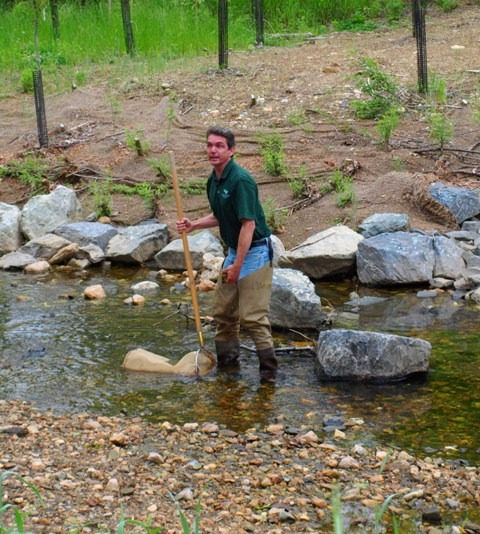 DEP staff member samples Booze Creek for macro-invertebrates.