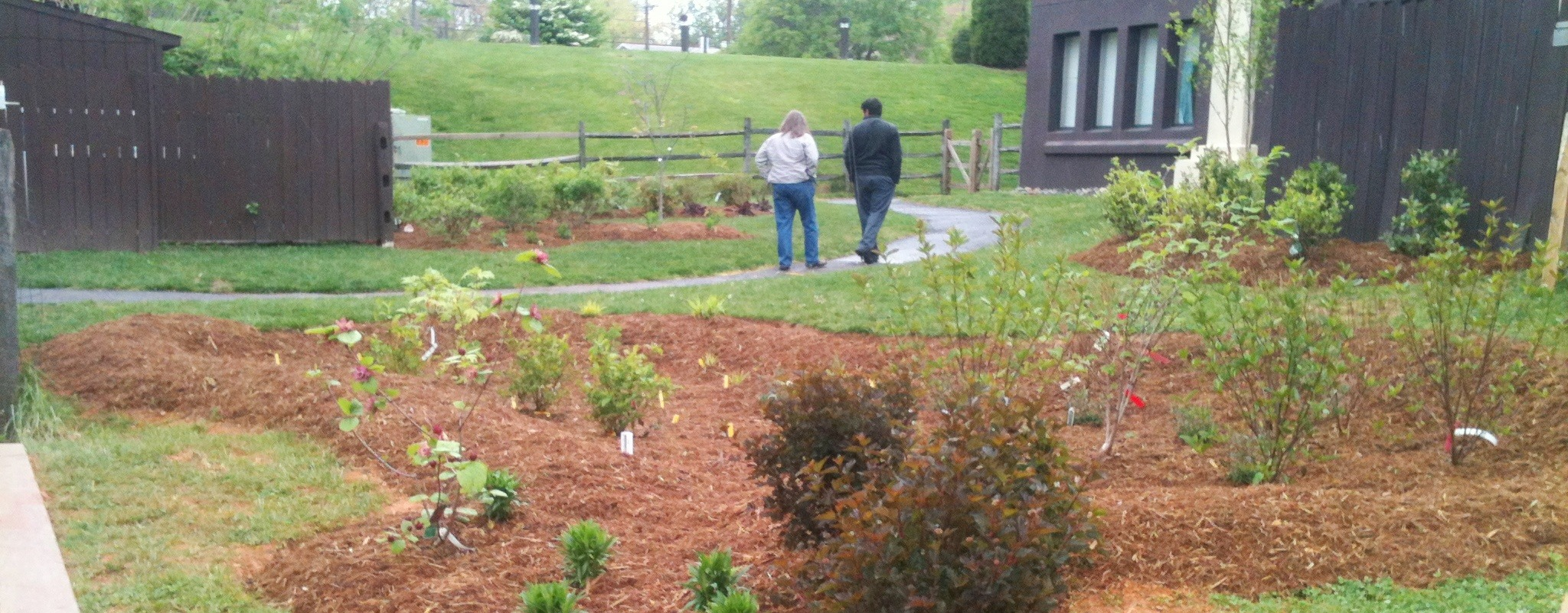 Image of St. James' Episcopal Church rain garden