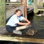 Image of Jamie, a Montgomery County Stream Steward, taking care of an oyster cage.