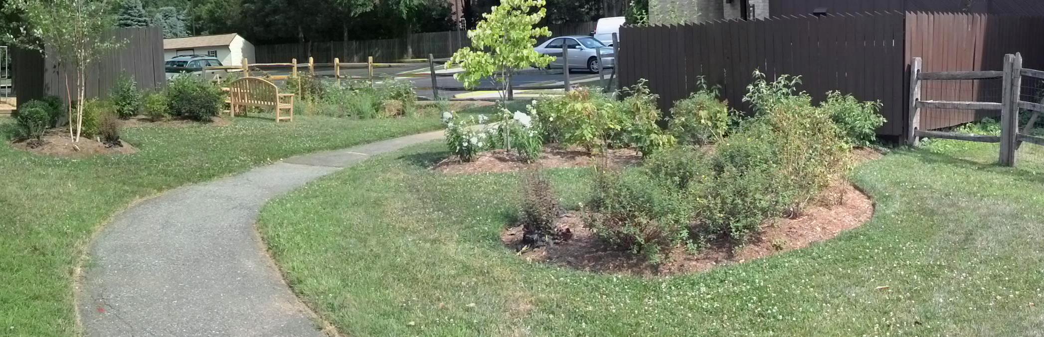 Image of St. James rain garden