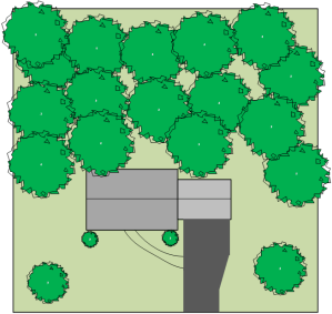 Graphic of a property before development in the forested area began.