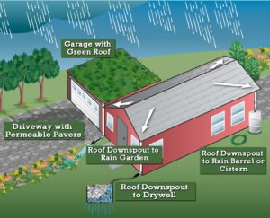 Graphic of a house with multiple types of stormwater management including a rain garden, green roof, permeable pavement and a drywell.
