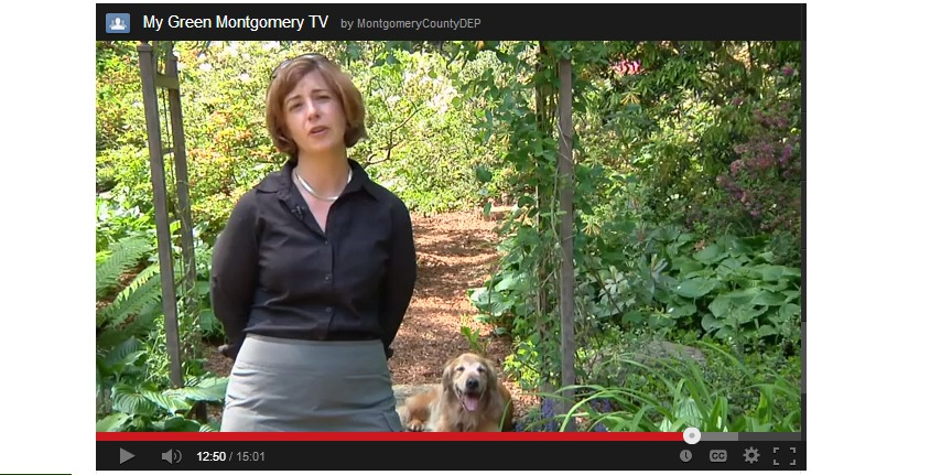 Image from My Green Montgomery TV Episode 5
