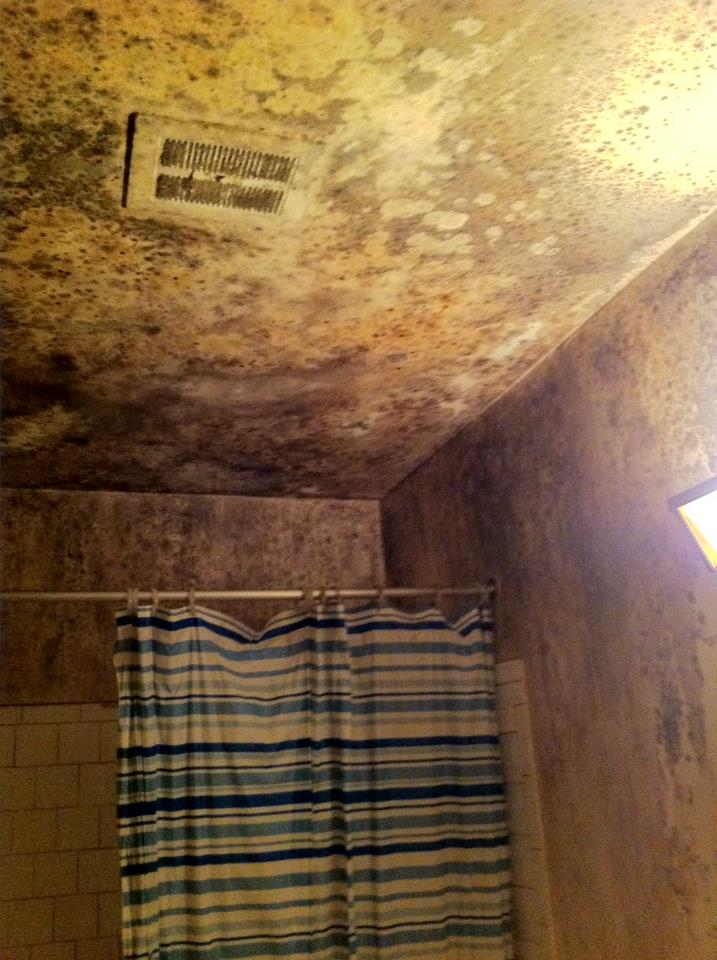 Image of moisture and mold in a bathroom
