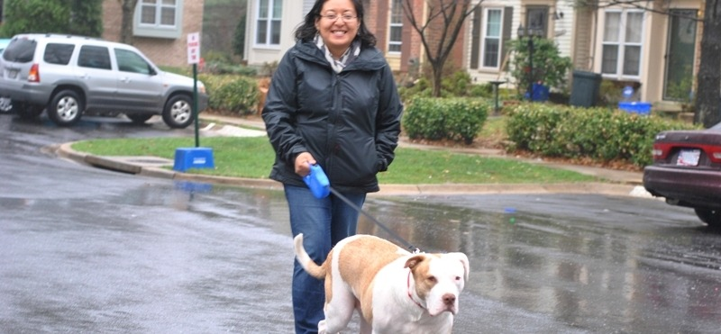 Image of woman walking dog.