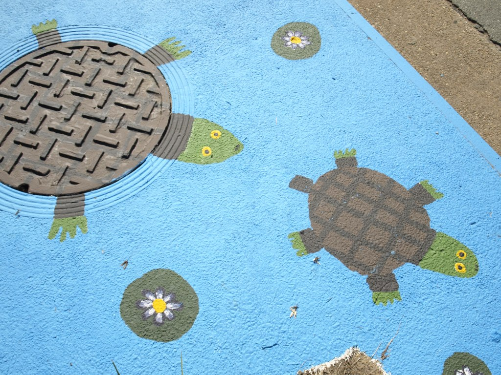 Image of the storm drain art project