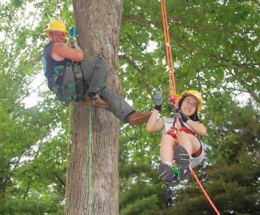 Image of someone climbing a tree.