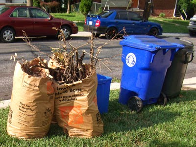 Image of Recycling bins and yard trim