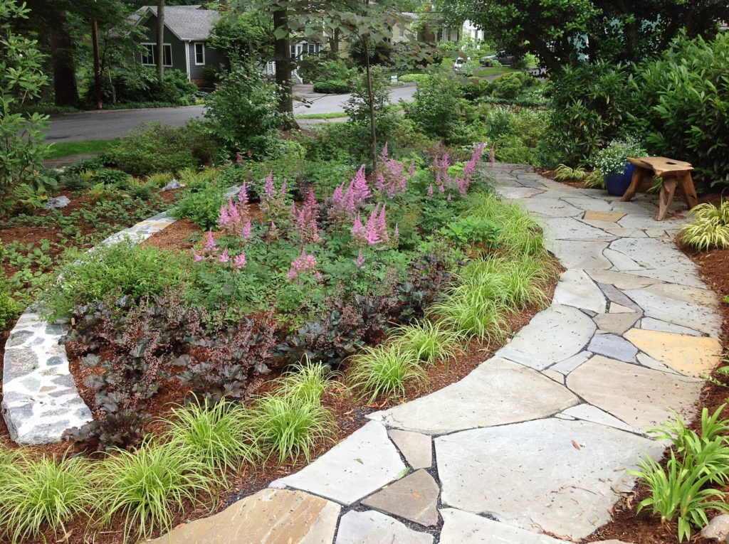 RainScapes Conservation Landscaping