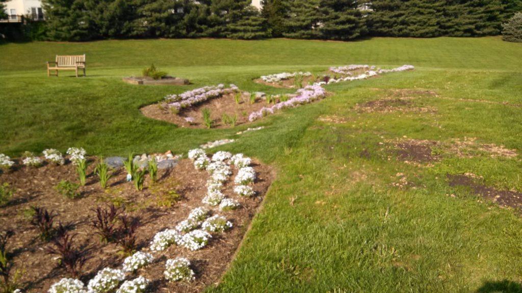 The final rain gardens