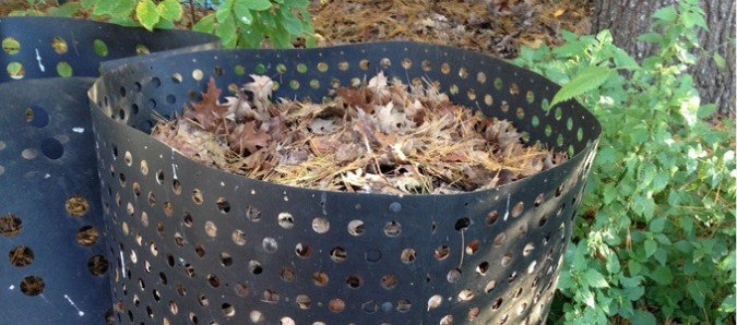 Yard care tips for the fall