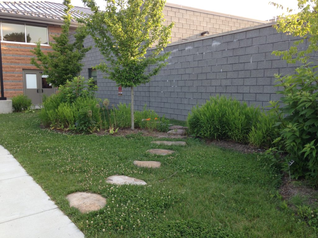 Stepping stones lead up to a garden