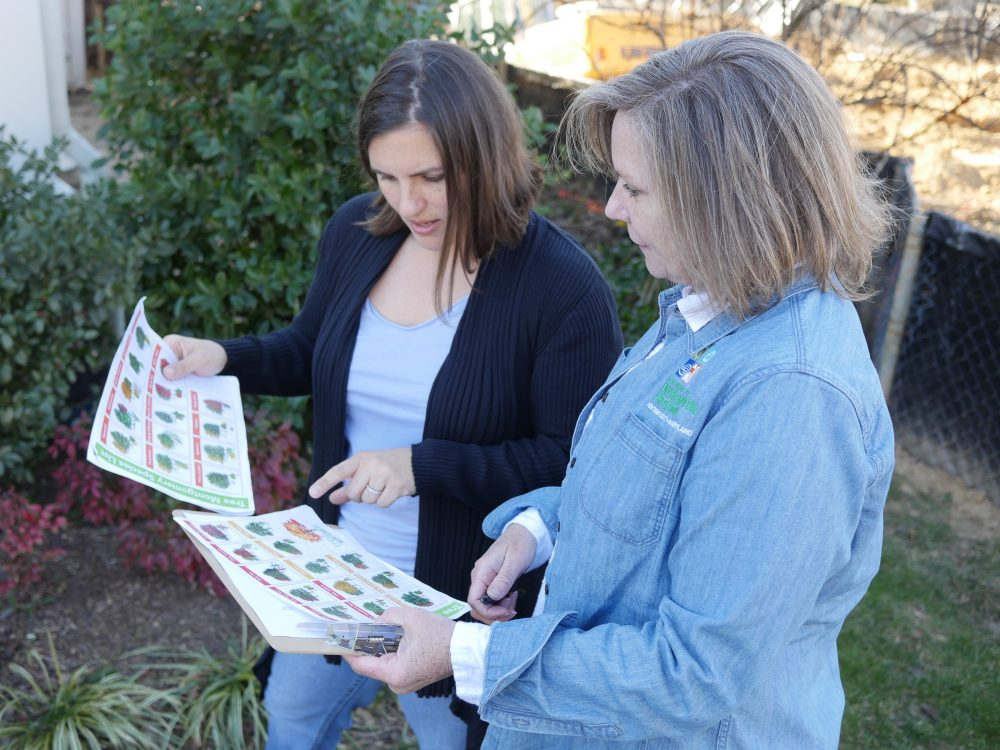 DEP staffer stands next to a resident, looking at a tree brochure