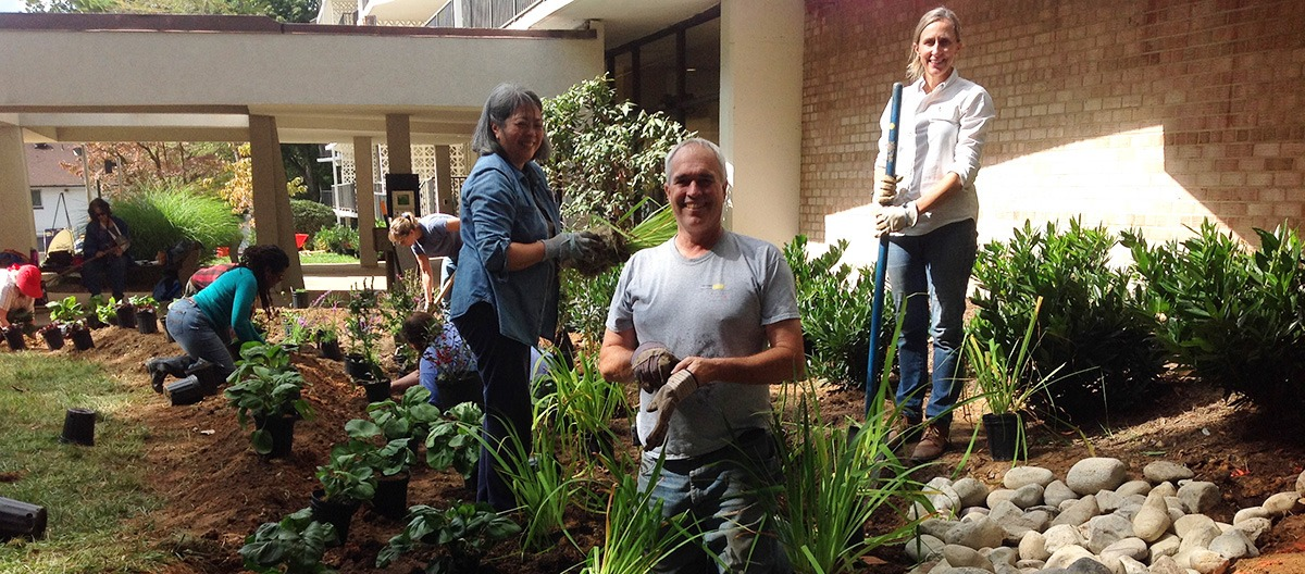 RainScapes Professionals: Finding one (or becoming one) in Montgomery County