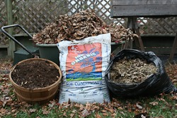 Different types of compost
