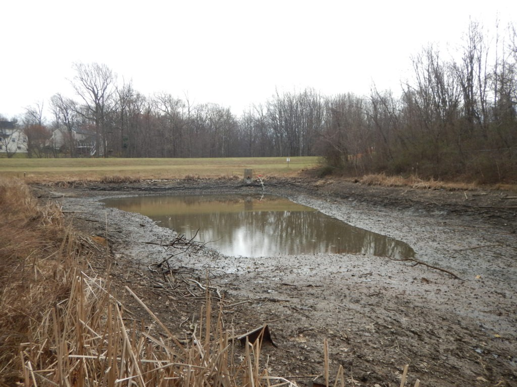 Plantations Pond after being pumped