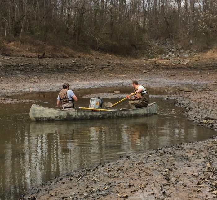 Eric and Ken electrofishing in a canoe