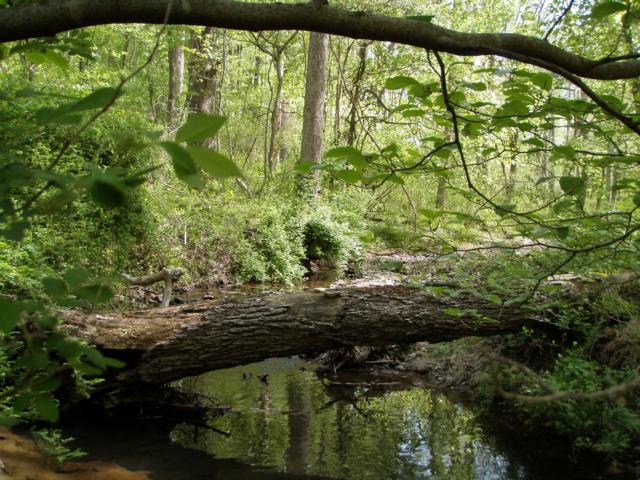 Little Seneca Creek
