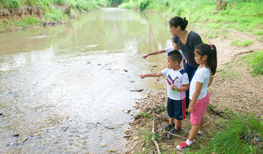 Kids learning by a stream