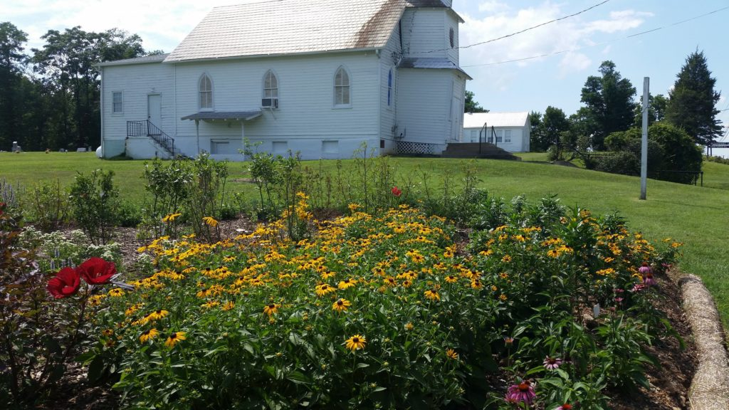 The Pleasant View conservation landscaping in July