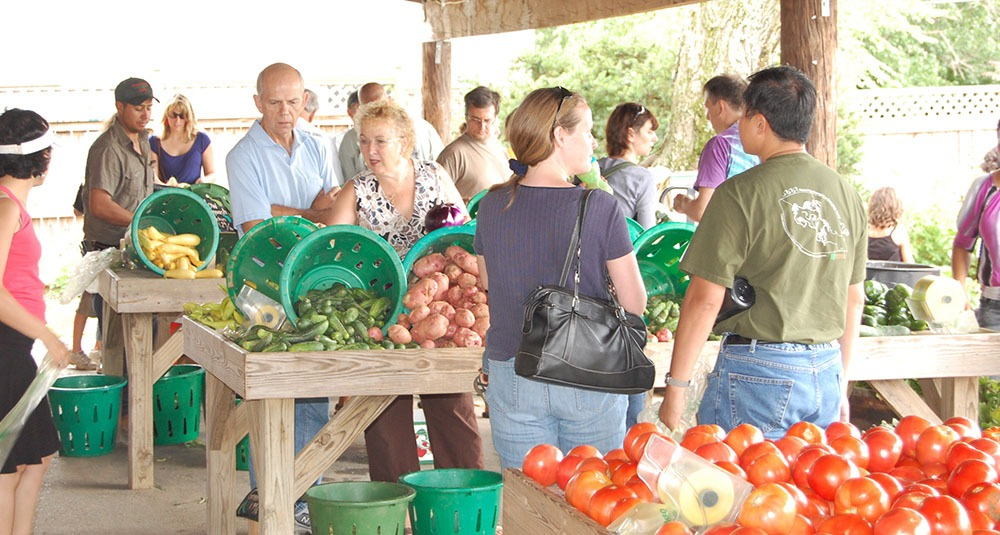 People at a farm stand