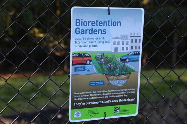 Bioretention gardens absorb rainwater and filter pollutants using soil, stone and plants.