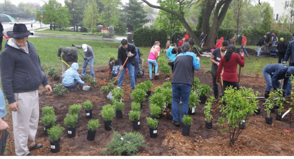 Local nonprofit organizations receive close to $300,000 in grants for environmental projects