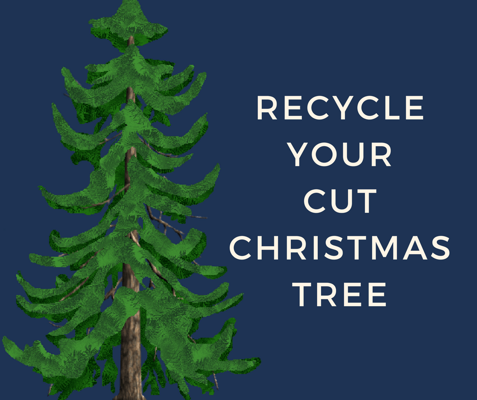 Recycle Your Cut Christmas Tree Facebook Post
