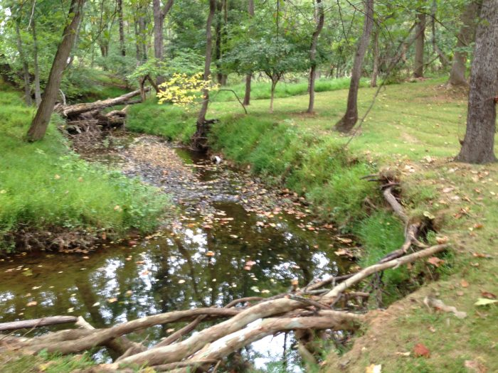 Pre-restoration, this stream's banks were eroding rapidly.