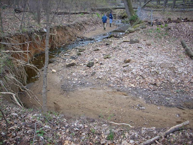 Pre-Restoration Stream