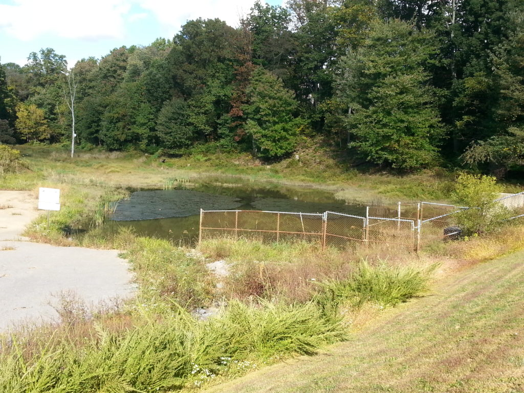 Valley Park Pond:Before Improvements: Pond area is reduced to approximately 1/3 of its original size due to sediment deposition, which reduced the water storage capacity.