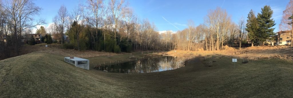 The view six months later: The pond in February 2018, showing the permanent wet pool and new riser. Temporary fencing around the edge of the pond helps to make the pond less inviting to geese while the newly-planted vegetation is becoming established.