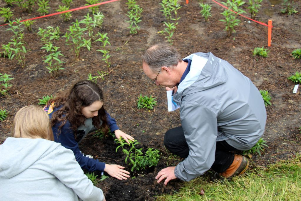 Frank Dawson, Watershed Restoration Division Chief, planting the final aster with an area resident.