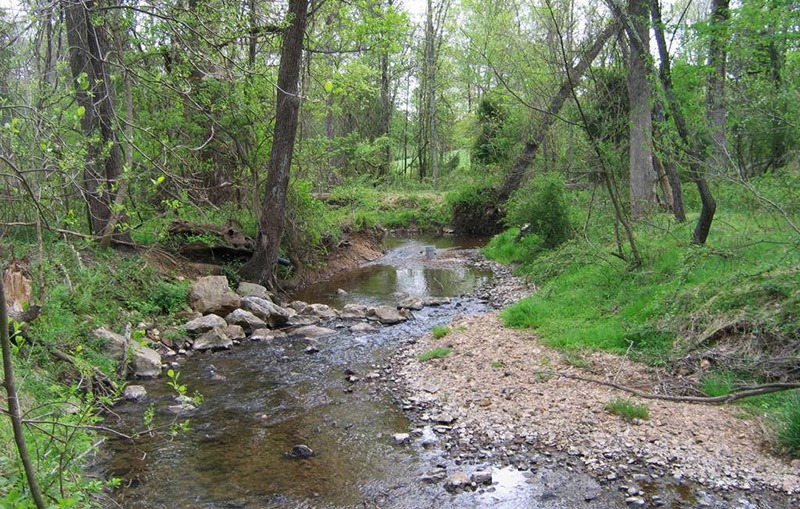 Civic engagement opportunity: join the County's Water Quality Advisory Group!