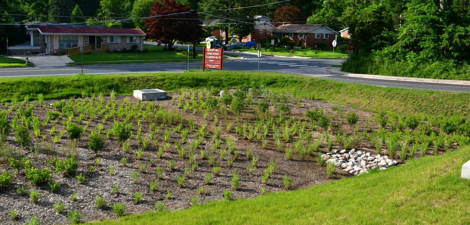 A Focus on Growth: Newport Mill Middle School's Bioretention Garden