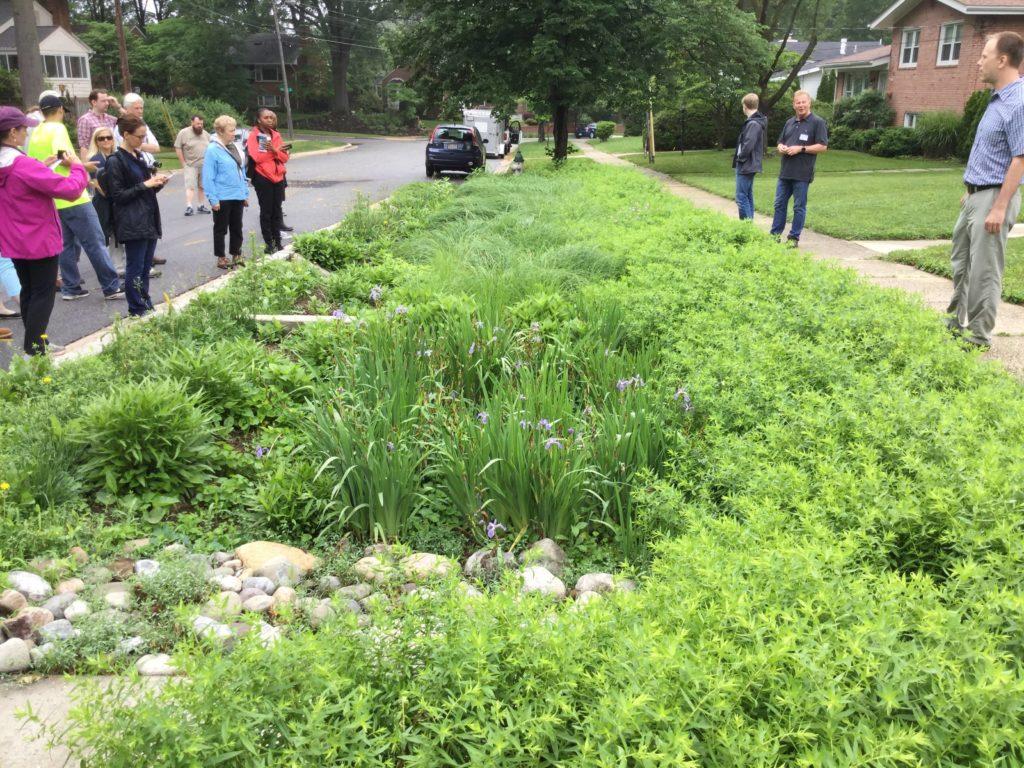 Walking Tour of Bioretentions