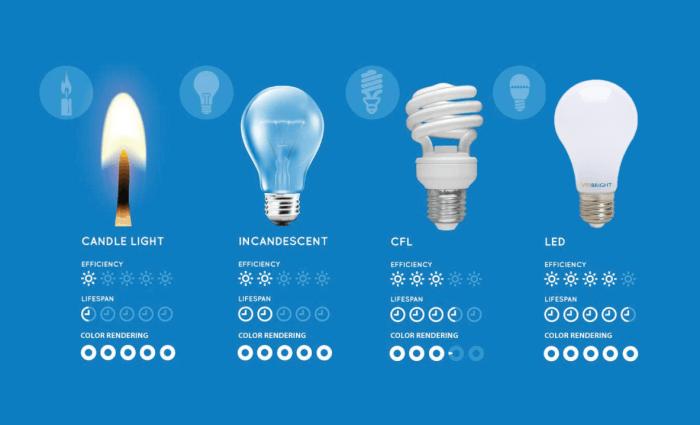 History of Bulbs