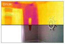 Flir Camera Image