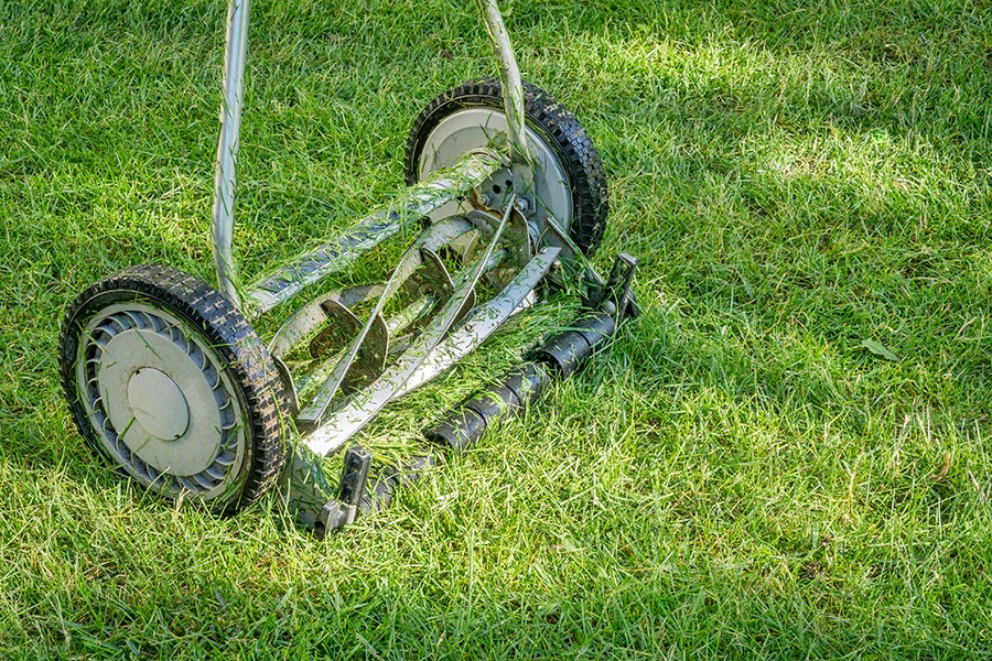 Hand lawn mower. Photo Marek Uliasz pixelsaway, 123RF