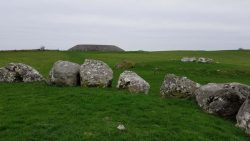 Lush green grass in Ireland by the Carrowmore megalitic cemetary