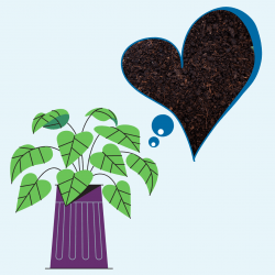 potted houseplant with a heart shaped thought bubble of compost