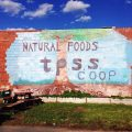 TPSS Food Co-op Mural